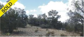 Private 42-acre lot 1551 in Sierra Verde Ranch