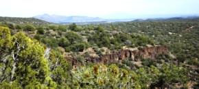 36.84 Beautiful Acres in Shadow Rock Ranch
