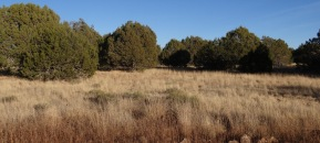 Lot 36 Shadow Rock Ranch